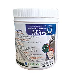 Метраболь