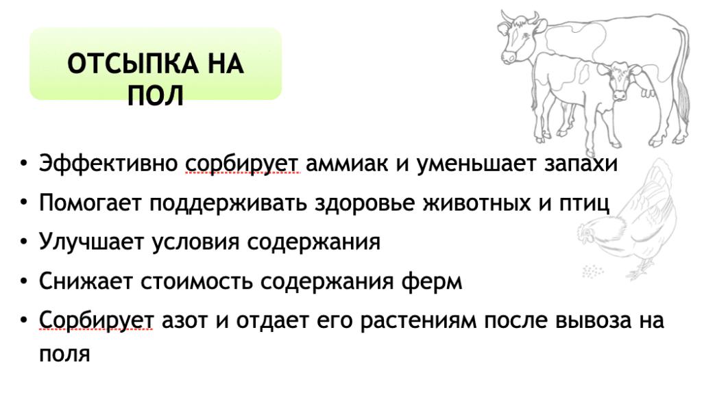 Клиноптилолит